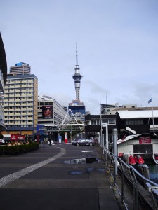 The Sky Tower from further away