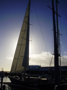 Sailboat on the Auckland harbour